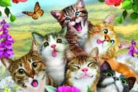 Selfies Cats 48 Pieces |Yorkshire Jigsaw Store